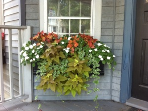 Zoe Forbes Fleuri Garden Design box garden window box arrangements I Love Newton MA