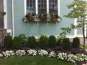 Fleuri Garden Design I love Newton MA Zoe Forbes