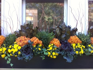 Fleuri Designs Zoe Forbes best window flower boxes container gardens I Love Newton Wellesley Brookline